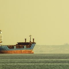 Dry Bulk Market Needs Zero Fleet Growth To Recover This Year Says BIMCO In Its Annual Estimate